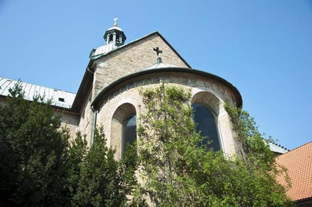 Der Tausendjährige Rosenstock am Hildesheimer Dom.